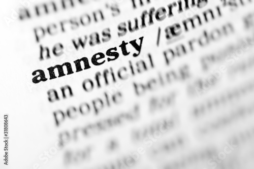 amnesty (the dictionary project) Wallpaper Mural