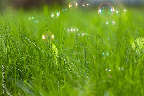 Keuken foto achterwand Paardebloem Soap bubbles on green grass