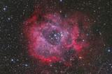 Fototapeta Fototapety na sufit - Rosette Nebula
