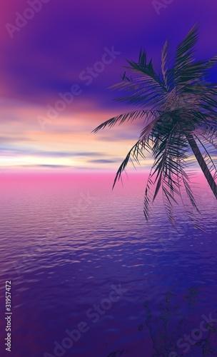 Cadres-photo bureau Violet nuit tropicale