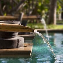 Fontaine En Bambou Dans Un Jar...