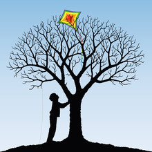 Aquilone Sull'albero