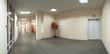 Office building interior corridor maple tree exit