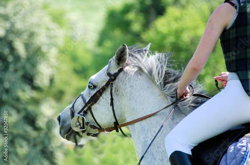 Tuinposter Paardrijden équitation