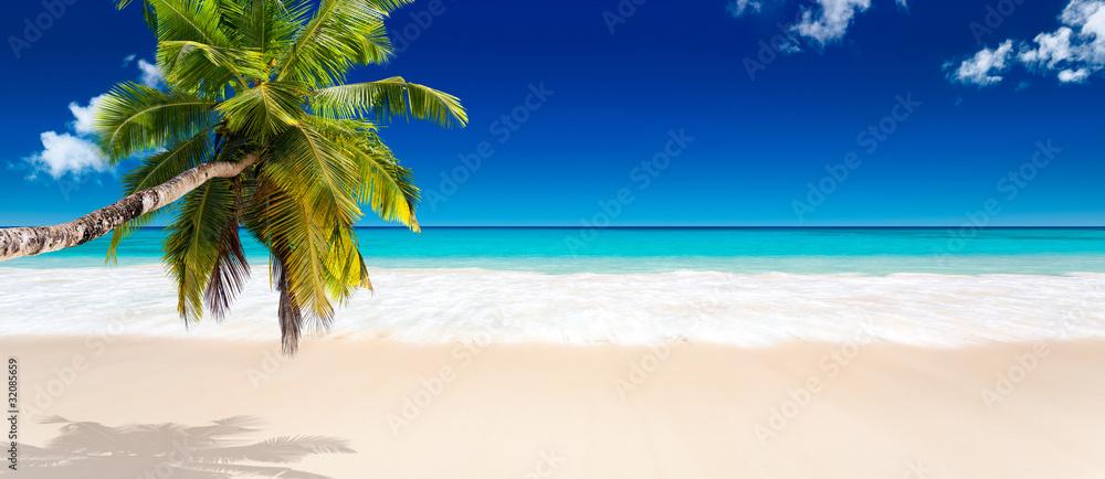 Foto Rollo Basic - seychelles plage