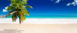 Fototapeta See - seychelles plage