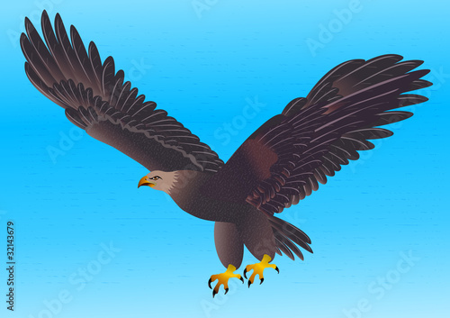 Photo  illustration flying strong eagle