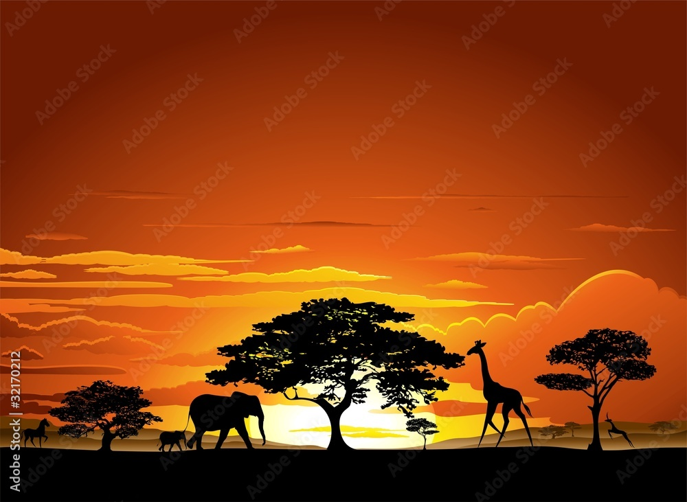 Fototapeta Savana Tramonto e animali-Savannah Sunset and Animals-2-Vector