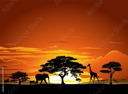 Garden Poster Draw Savana Tramonto e animali-Savannah Sunset and Animals-2-Vector
