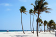 Ft.Lauderdale Beach