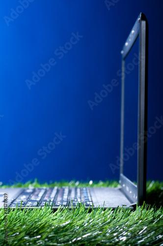 Foto auf Gartenposter Nordlicht laptop in grass