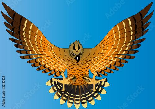 Photo  flying powerful eagle