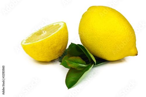 Cytryny z liściem #011