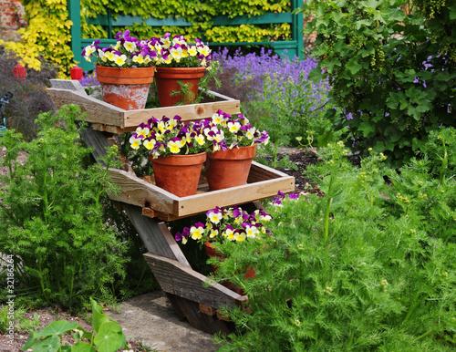 Ingelijste posters Pansies Colorful Flowerpot display in an English Garden