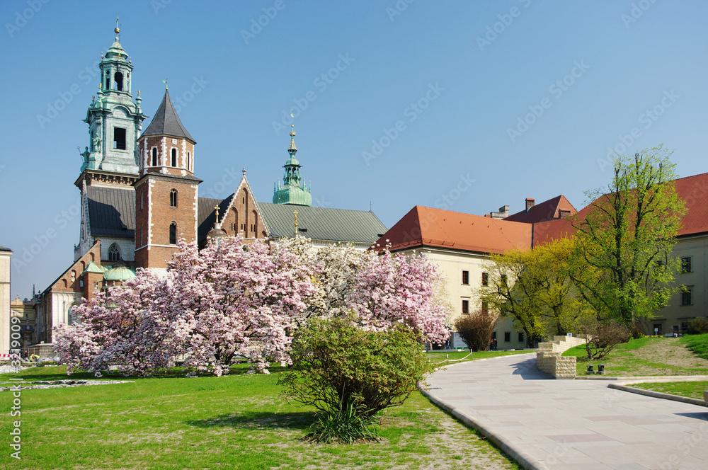 Fototapety, obrazy: Wawel w Krakowie, Polska