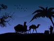 arabian blue sunset