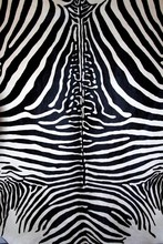 Animal Zebra Skin Black And Wh...