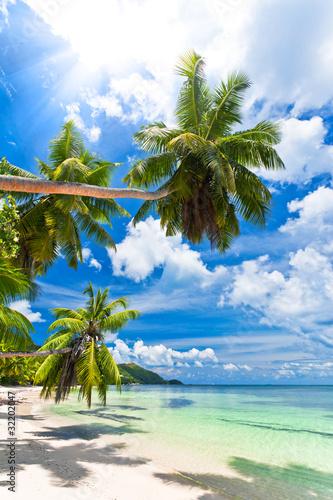 Foto-Schiebegardine Komplettsystem - seychelles plage cocotier