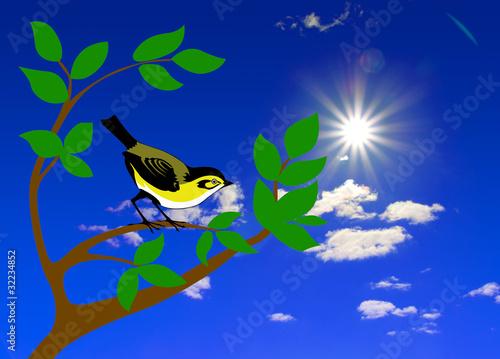 Poster Oiseaux, Abeilles bird on tree