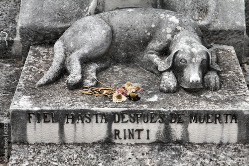 Foto op Canvas Begraafplaats Dog grave in Havana, Cuba
