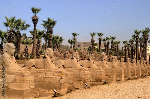 In de dag Egypte Avenue of Sphinxes in Luxor in Egypt