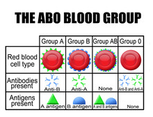 The ABO Blood Group Diagram