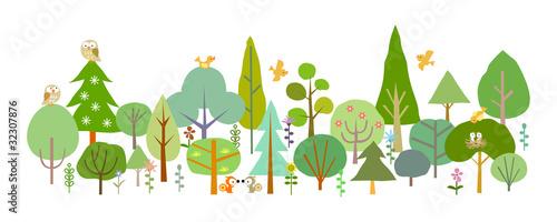 Fototapeta forest-D