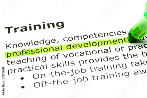 Cuadros en Lienzo  Dictionary definition of the word Training Professional development