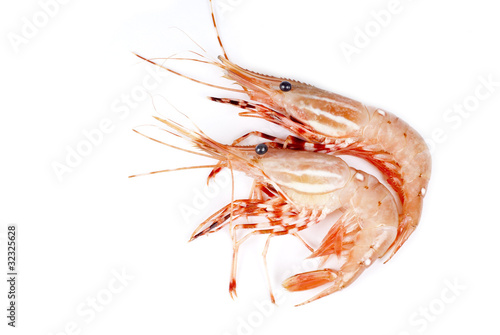 Raw Pink Shrimp Buy This Stock Photo And Explore Similar Images At