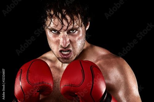 Fotografia  Boxer Boxing