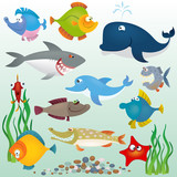 Cartoon fish set