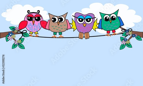 colourful owls sitting on a rope