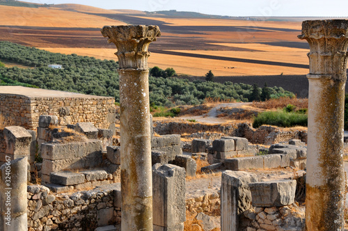 Papiers peints Maroc Rovine romane a Volubilis - Marocco