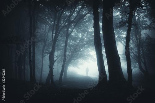 Fototapeten Wald shadow sneaking in the forest