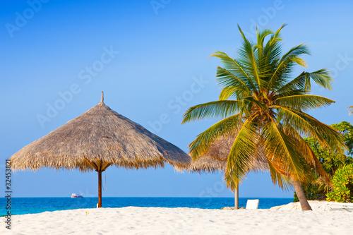 Cadres-photo bureau Tropical plage parasol under palm tree.