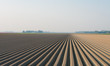 plowed field