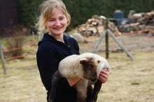 Junge Frau Mit Einem Lamm