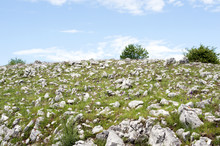 Countryside: A Stony Hilltop, ...