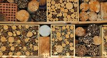 Insektenhaus Für Bienen, Hummeln, Wespen