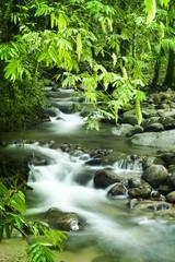 Panel Szklany Eko Mountain stream