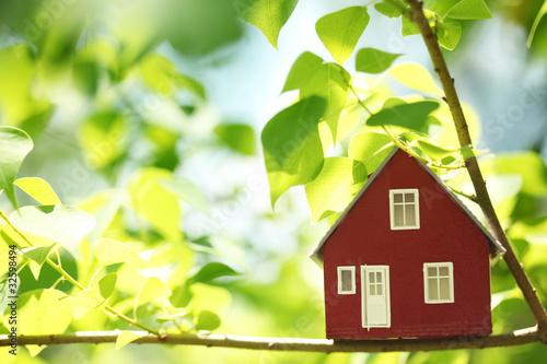 Fotografie, Obraz  House in the trees