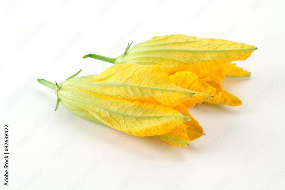 Fototapety, obrazy: fiori di zucca