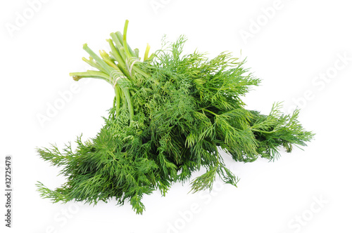 Garden Poster Plant Bunch of dill isolated on the white background