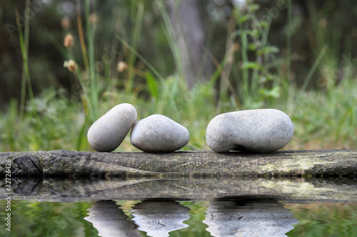 Photo Stands Water lilies Galets et Equilibre