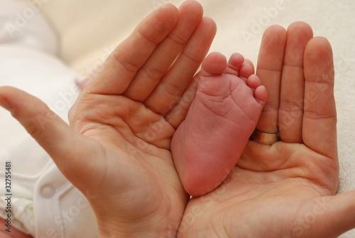 Fotografie, Obraz  Małe jest piękne