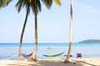 Sea, beach, jungle and hammock