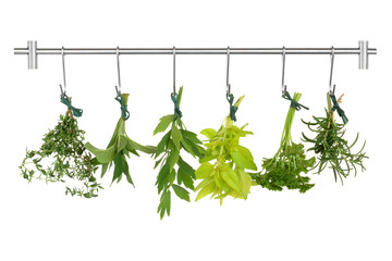 Obraz na PlexiHerb Leaves Drying