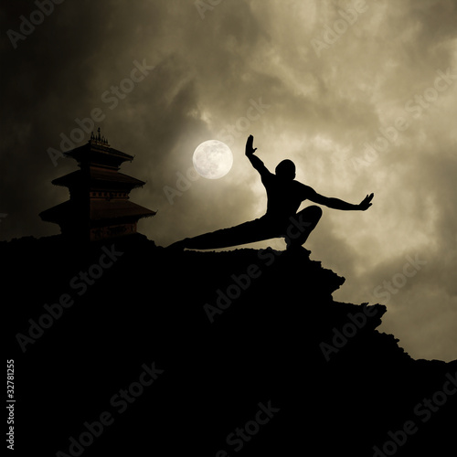 Fotografie, Obraz Kung Fu Martial Art Background
