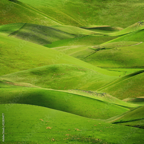 Foto op Plexiglas Groene Rolling green hills background