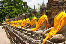 Row Of Sacred Buddha In Ayutth...